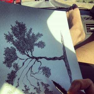 Andrea Currie, Fine Art Tree Drawings